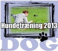 Hundetræning 2013