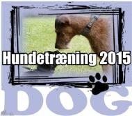 Hundetræning 2015