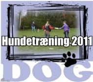Hundetræning 2011